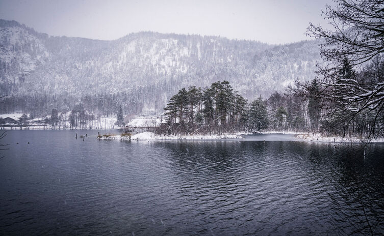 Thumsee Im Winter