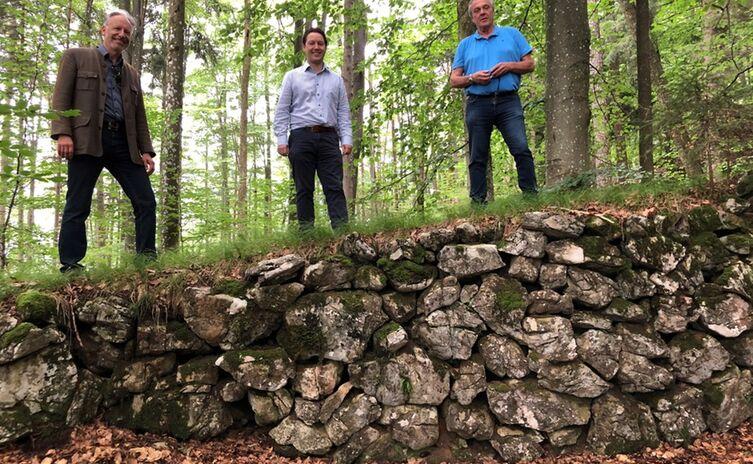 Stadtwald